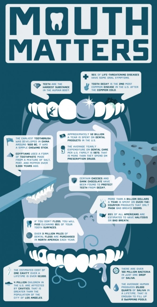 Fun dental facts about the mouth